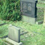 Zsidó temető. Kő a síron